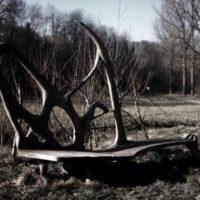 Bachabwärts – Geheimnisvolles Rennachtal